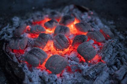 Węgiel drzewny, brykiet czy drewno? Jakie paliwo wybrać do grilla węglowego