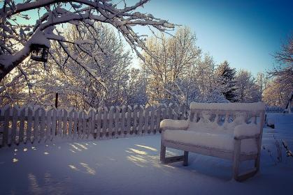 Zima w ogrodzie - niezbędne prace do wykonania